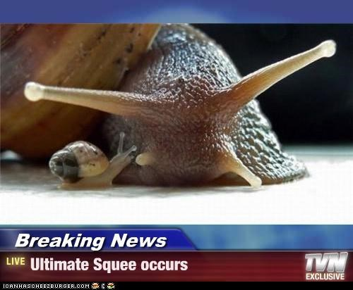 Breaking News - Ultimate Squee occurs