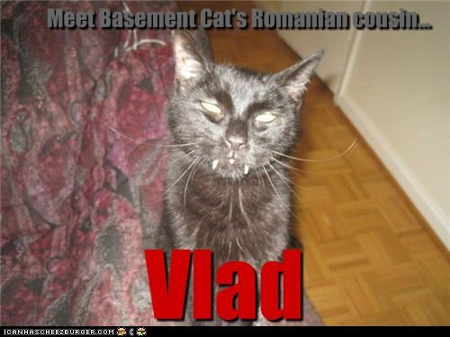 basement cat,caption,captioned,cat,cousin,fangs,Hall of Fame,romanian,vampire,vlad