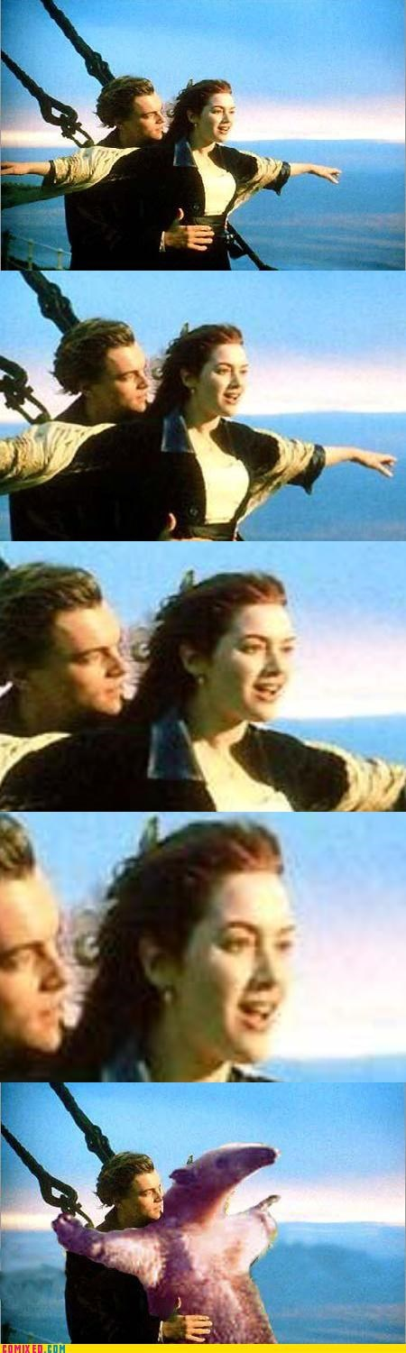 anteater awesome From the Movies kate winslet leonardo dicaprio titanic - 4376523776