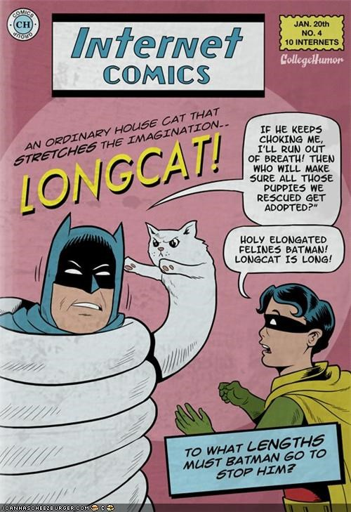 batman,comics,internet,longcat,meme,superheroes,villain