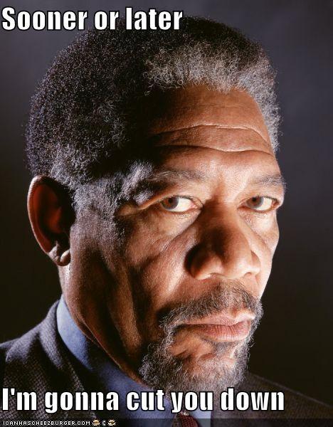 actor celeb funny Morgan Freeman - 4379653376