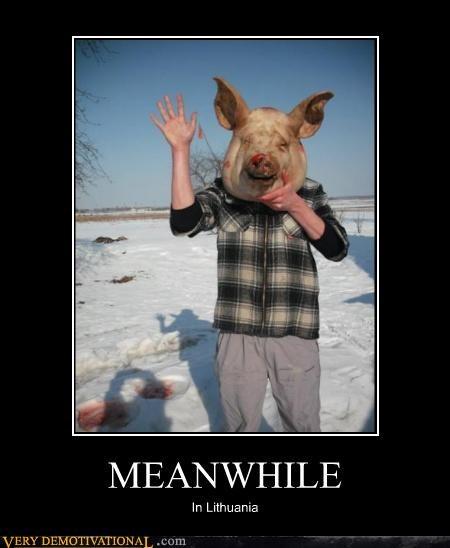 face head eww pig Meanwhile lithuania - 4380428544