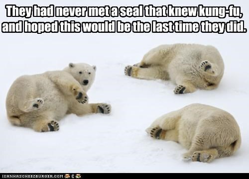 afraid,bear,bears,caption,captioned,encounter,experience,fear,fight,knowing,kung fu,polar bear,polar bears,seal