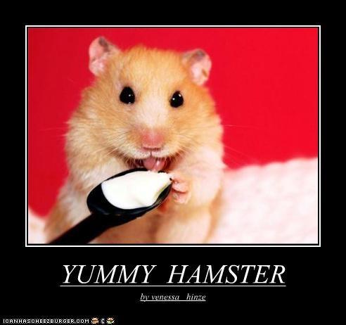 YUMMY HAMSTER by venessa hinze