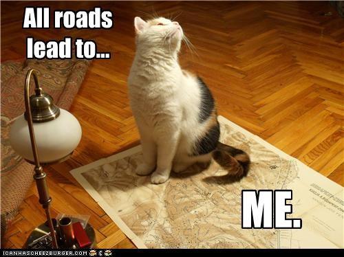 caption captioned cat center directions map me roads - 4381640704
