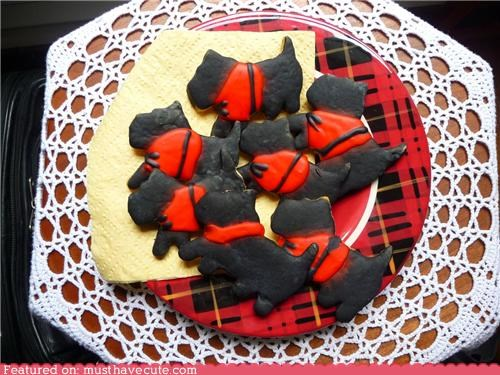 coat cookies dogs epicute icing scottie