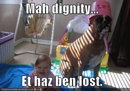 Cheezburger Image 4382459392
