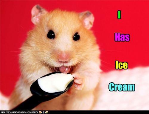 I Has Ice Cream