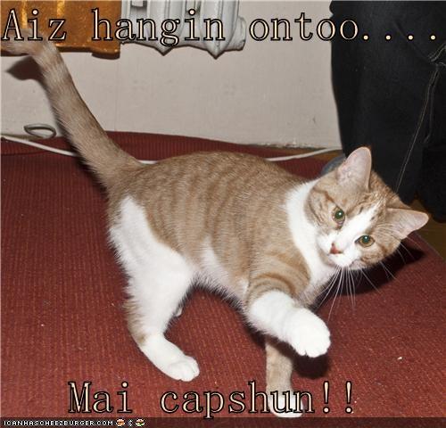 Cheezburger Image 4383048192