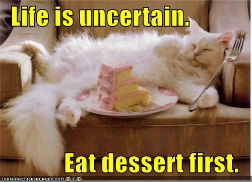 captioned dessert eating life eat Hall of Fame advice fork first uncertain caption cat cake - 4383373312
