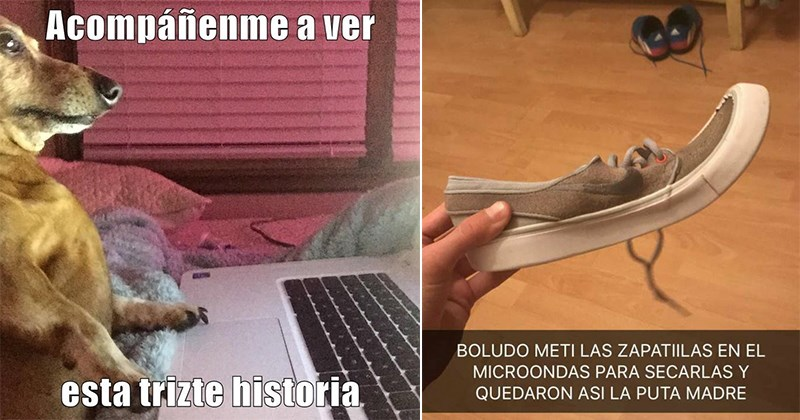 chico zapatillas