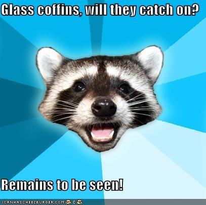 coffin,eww,glass,Lame Pun Coon,remains