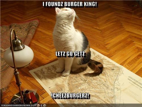 Cheezburger Image 4385743616