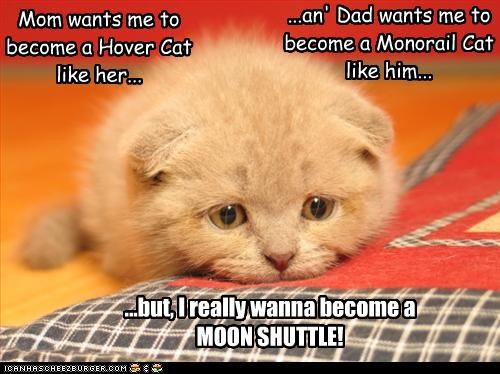angst caption captioned cat confused debate decisions do want HoverCat monorail cat moon moping parents problem shuttle suggestions want