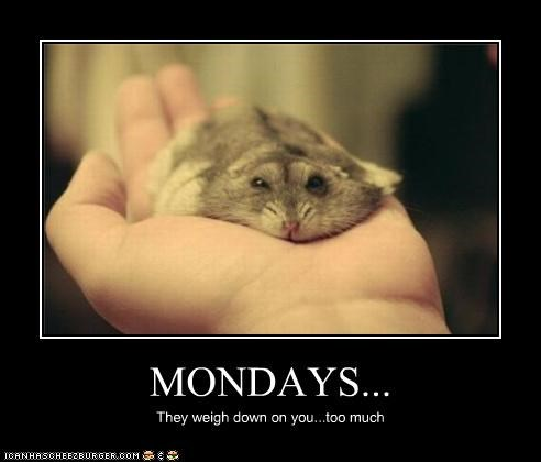 MONDAYS... They weigh down on you...too much