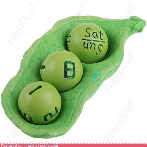 Haricot Bean Calendar
