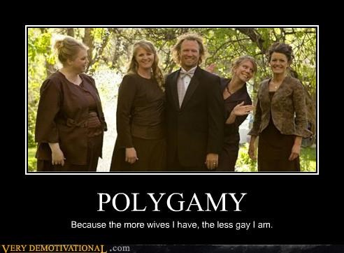 POLYGAMY Because the more wives I have, the less gay I am.