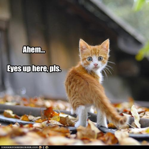 Ahem... Eyes up here, pls.