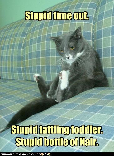 bottle,caption,captioned,cat,complaining,nair,stupid,tattling,time out,toddler