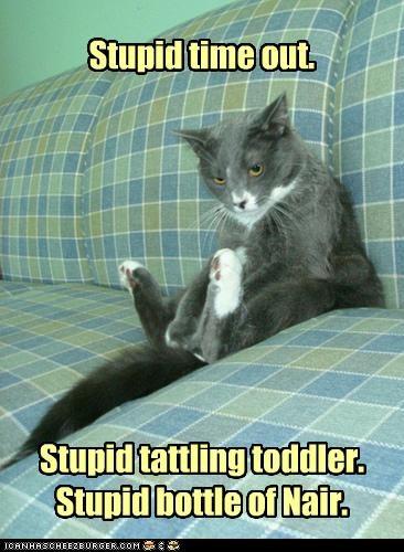 bottle caption captioned cat complaining stupid tattling time out toddler - 4387474176