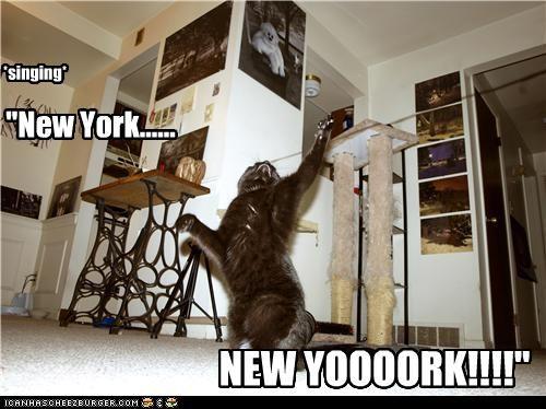 """*singing* """"New York...... NEW YOOOORK!!!!"""""""
