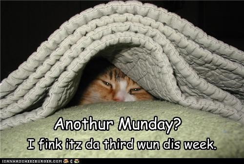 Anothur Munday? I fink itz da third wun dis week.