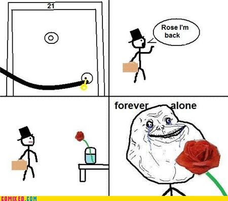 Flower,forever alone,hotel room,rose