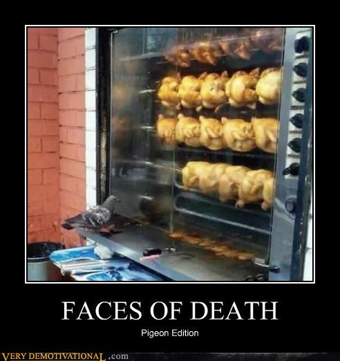 faces of death,pigeon,chicken,food