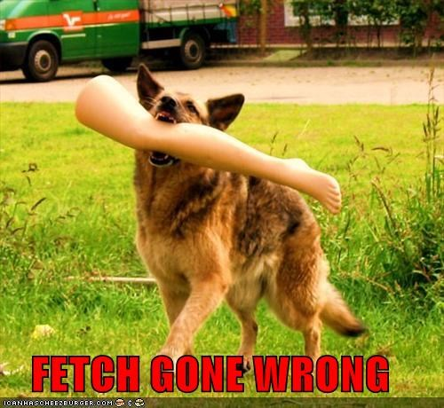 accident doing it wrong doll fetch fetching german shepherd gone Hall of Fame leg mannequin wrong