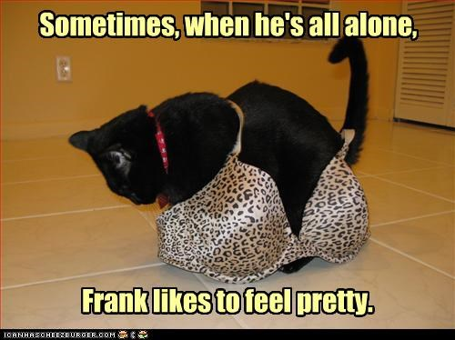 alone,bra,caption,captioned,cat,crossdressing,dreaming,feeling,Hall of Fame,male,pretty,sometimes