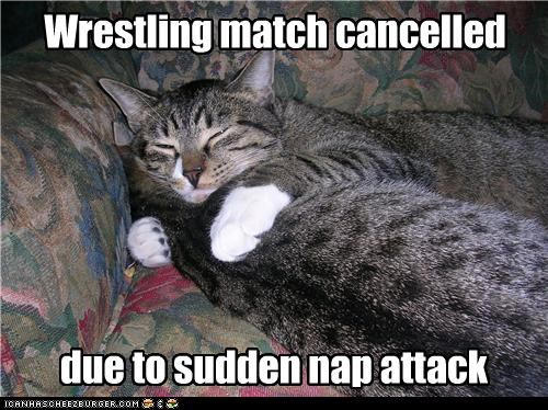 Wrestling match cancelled due to sudden nap attack