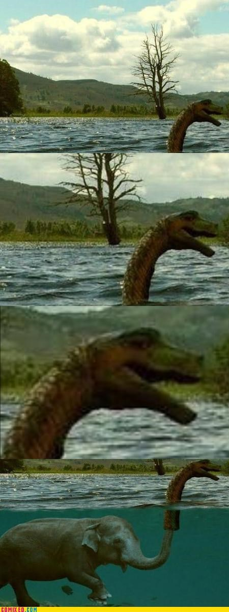 animals elephants loch ness monster lol troll - 4390793472