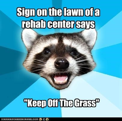 grass,keep off the grass,Lame Pun Coon,rehab