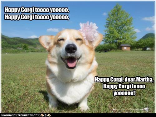 Happy Corgi toooo yooooo, Happy Corgi toooo yooooo, Happy Corgi, dear Martha, Happy Corgi toooo yoooooo!