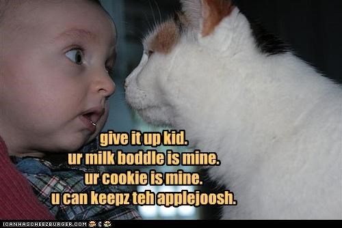 apple juice baby bottle caption captioned cat cookies give up hopeless human kid milk ownership Staring - 4391549952