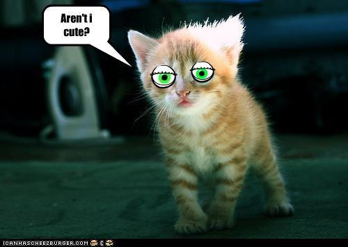 Look at my new eyes!