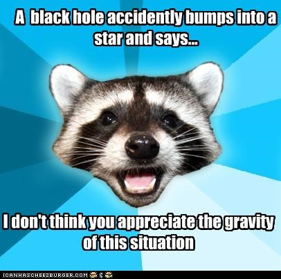 Gravity,Lame Pun Coon,sucks