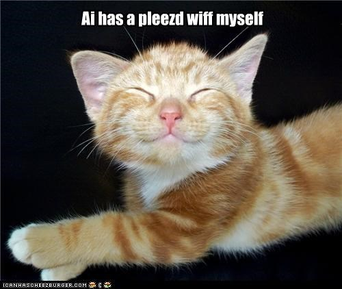 caption captioned cat content contented i has kitten myself pleased self tabby - 4391799040