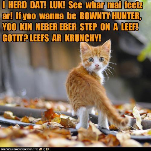 I HERD DAT! LUK! See whar mai feetz ar! If yoo wanna be BOWNTY HUNTER, YOO KIN NEBER EBER STEP ON A LEEF! GOTIT? LEEFS AR KRUNCHY!