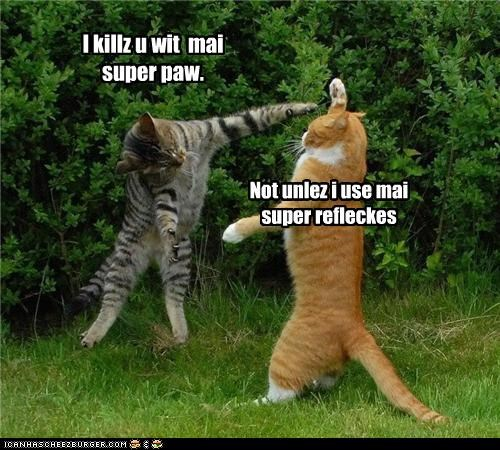 I killz u wit mai super paw. Not unlez i use mai super refleckes