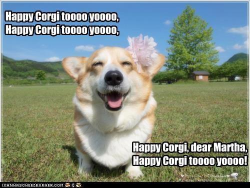 Happy Corgi toooo yoooo, Happy Corgi toooo yoooo, Happy Corgi, dear Martha, Happy Corgi toooo yoooo!