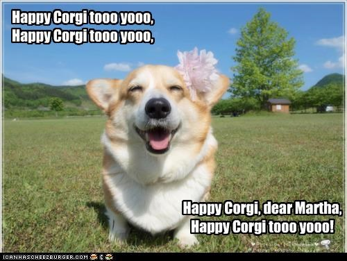 Happy Corgi tooo yooo, Happy Corgi tooo yooo, Happy Corgi, dear Martha, Happy Corgi tooo yooo!