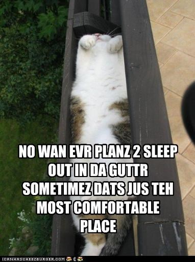 NO WAN EVR PLANZ 2 SLEEP OUT IN DA GUTTR SOMETIMEZ DATS JUS TEH MOST COMFORTABLE PLACE