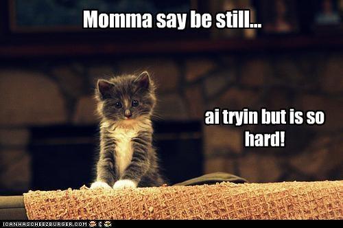 ai tryin but is so hard! Momma say be still...