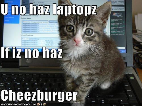 Cheezburger Image 4393265664
