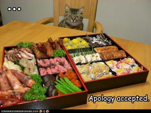 accepted apology caption captioned cat elipsis food happy noms offering thinking - 4393537792