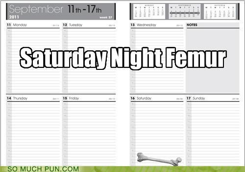 calendar,femur,literalism,Movie,night,off-rhyme,planner,saturday,saturday night fever,schedule,title