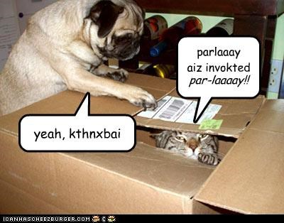 box,cat,do not want,invoked,mail,parlay,pug,shipping,upset