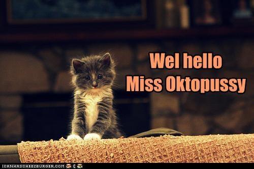 Wel hello Miss Oktopussy