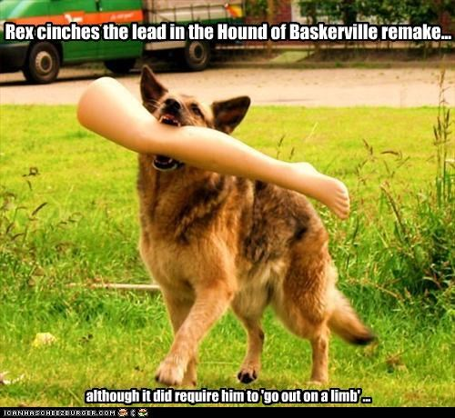 Rex cinches the lead in the Hound of Baskerville remake... although it did require him to 'go out on a limb' ...